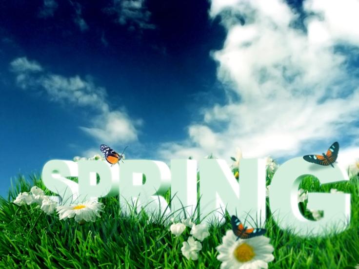 spring-061